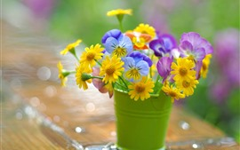 Yellow, pink, blue flowers, bucket