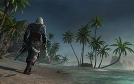 Preview wallpaper Assassin's Creed, palm trees, beach