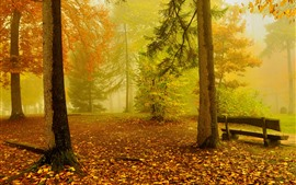 Preview wallpaper Autumn, trees, fog, bench, nature scenery