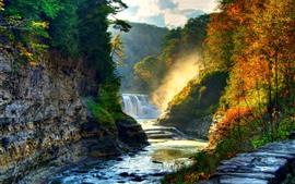 아름다운 자연 풍경, 폭포, 나무, 태양 광선