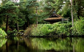 Preview wallpaper England, Tatton Park, gazebo, pond, trees, bridge