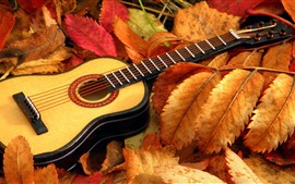 Preview wallpaper Guitar, leaves, autumn