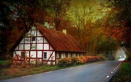 Casa, árvores, folhas vermelhas, estrada, outono