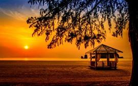 Malasia, mar de Andamán, Langkawi, mar, árbol, puesta de sol, silueta