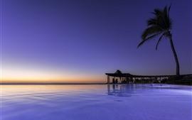 Preview wallpaper Mexico, Nayarit, Palma, sea, palm tree, tropical, sunset