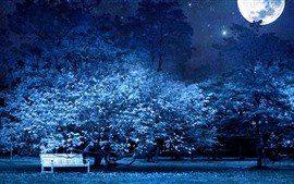 Preview wallpaper Moon, bench, tree, flowers, night, starry