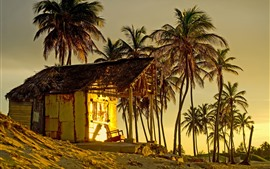 Preview wallpaper Palm trees, hut, sunset, tropical