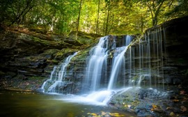 Preview wallpaper Park, waterfall, trees, forest, nature