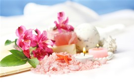 Lirios rosados, sal, vela, estrella de mar