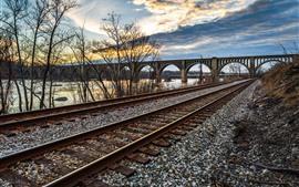 Ferrocarril, puente, río, árboles, nubes, anochecer