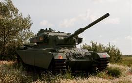 Tanque, armadura, exército