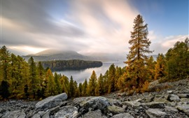 Trees, lake, rocks, clouds, autumn