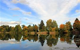 Деревья, река, отражение воды, осень