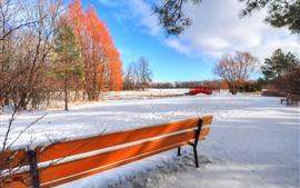 Inverno, neve, banco, árvores, ponte, parque