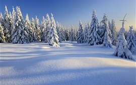 Preview wallpaper Winter, thick snow, trees, forest, white world