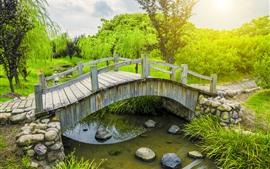 Puente de madera, río, plantas verdes, parque, sol