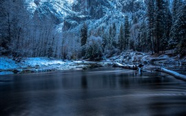 Preview wallpaper Yosemite National Park, driftwood, trees, river, winter