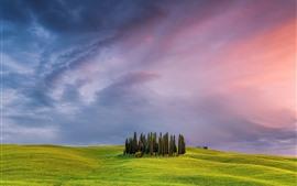 Красивый природный ландшафт в Тоскане, Италия, зеленые поля, деревья