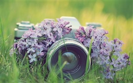 Preview wallpaper Camera and lilac flowers, lens, grass