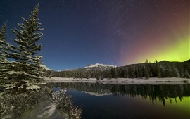 Canadian Rockies, northern lights, starry, trees, lake, mountains, snow