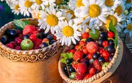 Ромашка, цветы, ягоды, фрукты