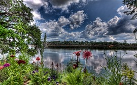 Flowers, river, clouds, dusk