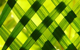 Preview wallpaper Green grass leaves, fence