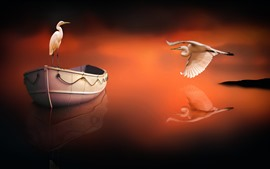 Preview wallpaper Heron, boat, water reflection, creative picture