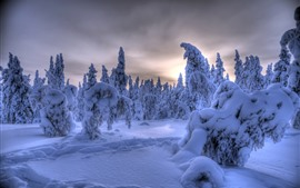 Preview wallpaper Lapland, Finland, thick snow, trees, winter