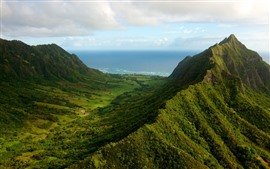 Montanhas, verde, mar, pico
