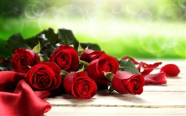 Red roses, green background, hazy, light circles
