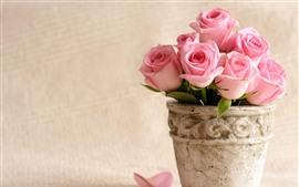 Некоторые розовые розы, лепестки, ваза
