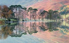 Algumas árvores, lago, reflexão da água