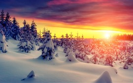 Preview wallpaper Sunset, snow, trees, winter, red sky, clouds