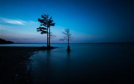 Деревья, берег, море, силуэт, сумерки