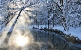 Aperçu fond d'écran Arbres, rivière, neige, rayons du soleil, matin, hiver