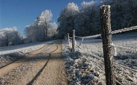 冬天,厚厚的雪,篱笆,树木,道路,乡村