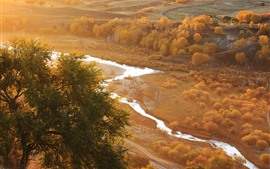 Preview wallpaper Bashang, golden autumn, trees, river, fog, morning, China