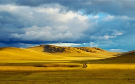 Preview wallpaper Bashang grassland, golden autumn, China
