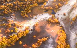 Lindo outono, Wulan Butong Grassland, árvores, vista superior