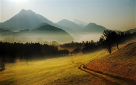 Countryside, trees, mountains, fog, morning