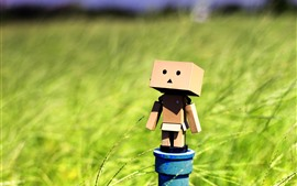 Preview wallpaper Danboard, green grass