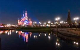 Aperçu fond d'écran Disneyland, beau château, lumières, rivière, nuit