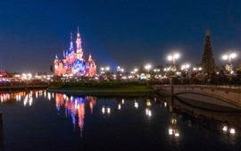 Disneyland, hermoso castillo, luces, río, noche