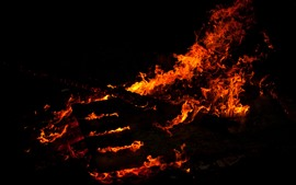 Preview wallpaper Fire, flame, firewood, black background