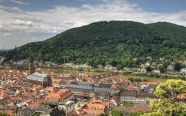 Preview wallpaper Germany, Heidelberg, city, river, bridge, mountain