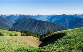 Mountains, peaks, green, sunshine, nature landscape