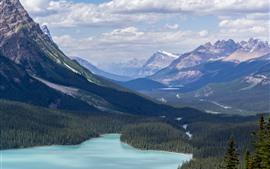 Природа пейзаж, озеро, лес, горы