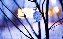 Preview wallpaper Pocket watch, trees, silhouette, sunset