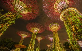 Preview wallpaper Singapore, marina bay gardens, light, night